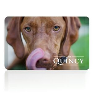 Quincy USB Flash Drive